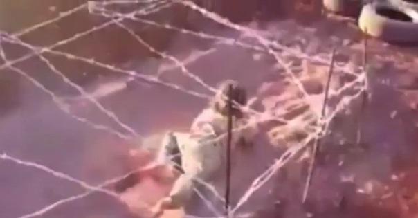 سینه خیز ماهرانه کودک داعشی میان گلوله و سیم خاردار + تصاویر و فیلم