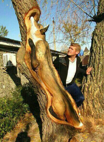 تراشکاری هنرمندانه روی تنه درخت + عکس