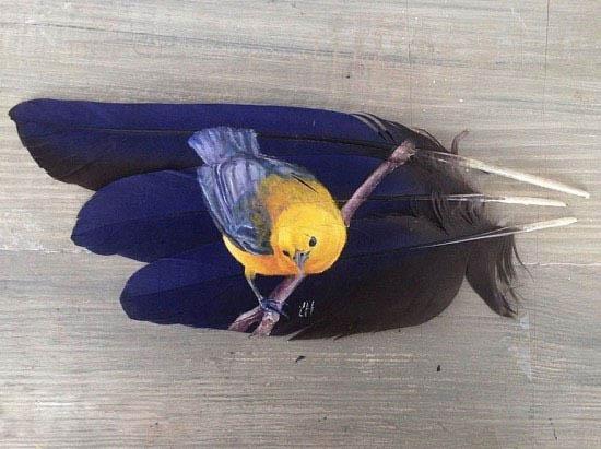 نقاشی بر روی پر پرندگان + عکس