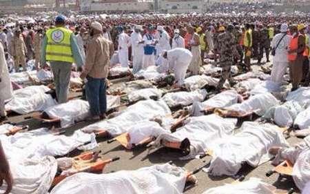 سازمان حج و زیارت آمار جانباختگان فاجعه منا را 464 تن اعلام کرد