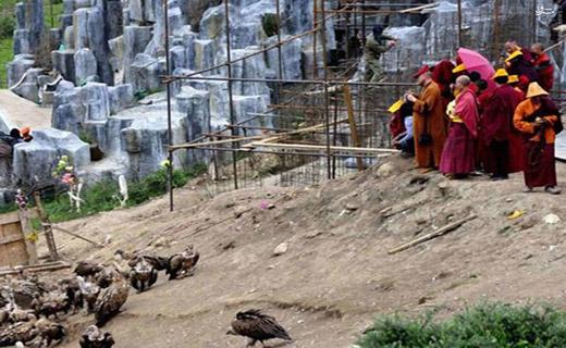 هدیه عجیب تبتی ها به کرکسها +عکس