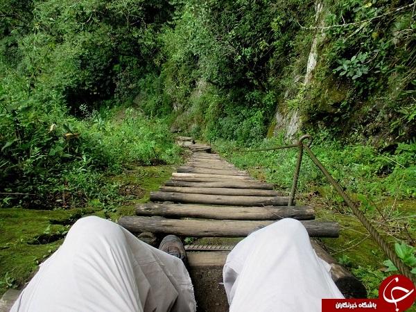 وحشتناک ترین پله جهان +عکس