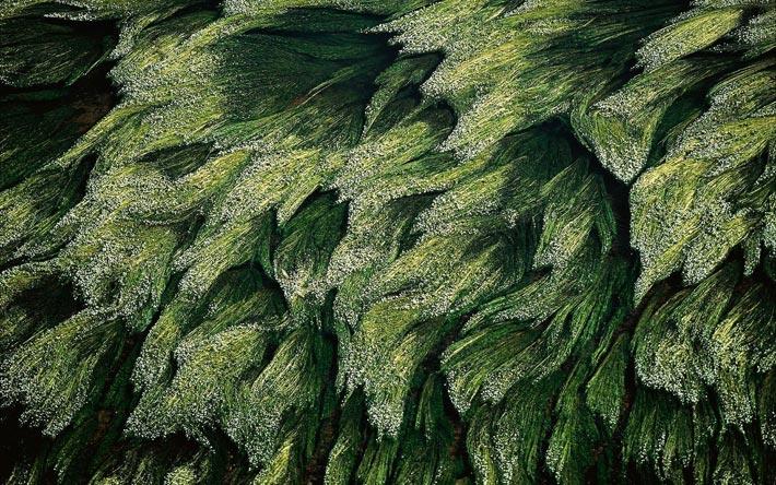 تصاویر هوایی جالب از مناطق دیدنی جهان (قسمت دوم)