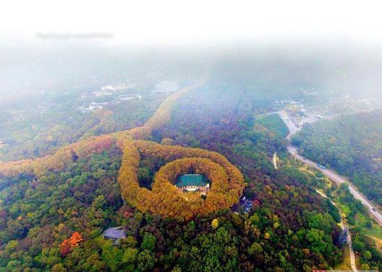 کاخ عشق در چین +عکس