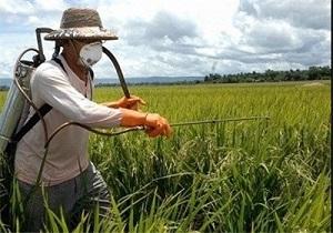 نظارتی بر کیفیت سموم کشاورزی نیست