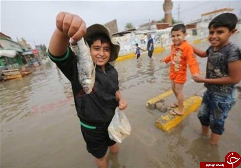 ماهیگیری در خیابان + عکس