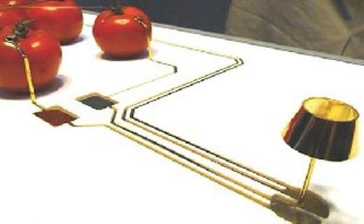لامپی که با گوجه فرنگی روشن میشود +عکس