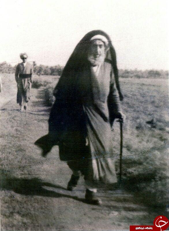 تصاویری ازعلمای دین در پیاده روی کربلا