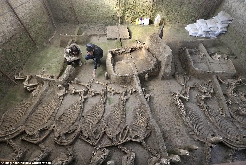 آرامگاه 2500 ساله اسب ها با کالسکه!