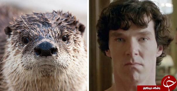 تقلید بازیگر بریتانیایی از حیوانات + عکس