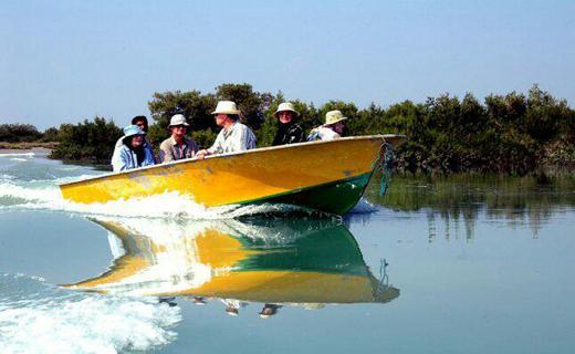 جنگل های مانگرو هرمزگان جاذبه طبیعی گردشگری در آب های خلیج فارس+تصاویر