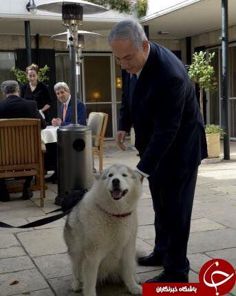 جان کری در تماشای دو سگ پاچه بگیر اسرائیلی + عکس