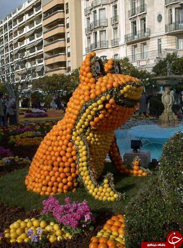 زیباترین مجسمه های میوه ای دنیا+عکس