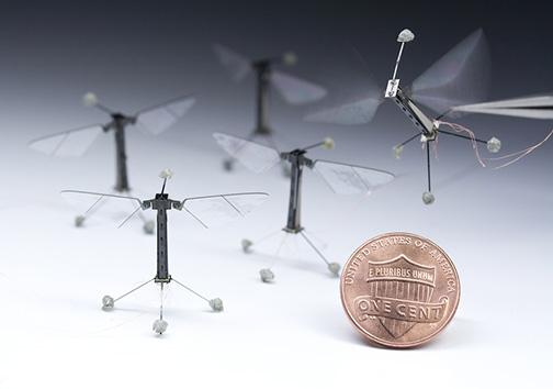 رباتهای زنبوری در آینده به کمک نیروهای امداد میآیند +تصویر