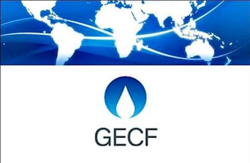 النیادی: اجلاس سران کشورهای صادر کننده چارچوب جدیدی برای سرمایه گذاری درصنعت گاز ایفا میکند