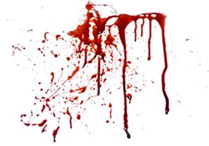 مادر گچسارانی دو کودک خود را به قتل رساند