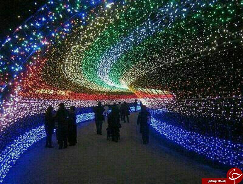 باغی با هزاران لامپ در ژاپن + تصاویر
