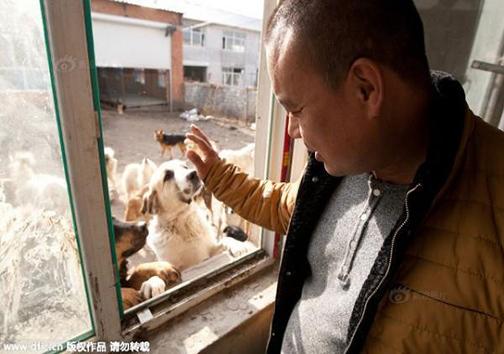 میلیونری که به خاطر کمک به حیوانات فقیر شد + تصاویر