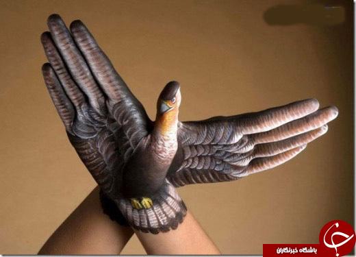 آلبومی از خلاقیت نقاشی روی دست انسان