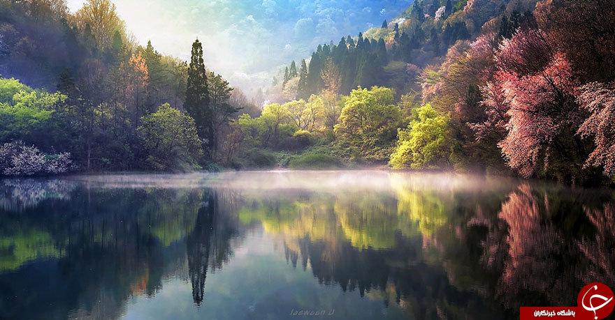 زیباترین بازتاب های طبیعت + عکس