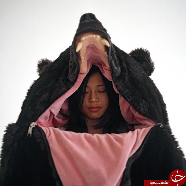 تا به حال داخل یک خرس خوابیده اید؟