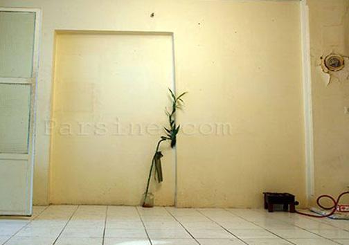 خانهای حسین پناهی + عکس