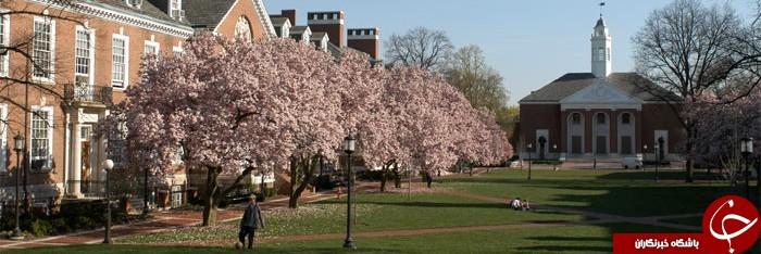 گران ترین دانشگاه های جهان را بشناسید+ تصاویر