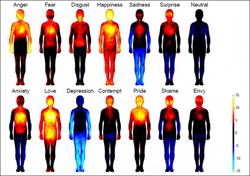 عشق و احساسات در کجای بدن کار می کنند؟+تصاویر