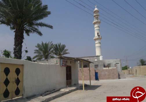 لارک جزیر ه ای بکر در دل خلیج همیشه فارس + تصاویر