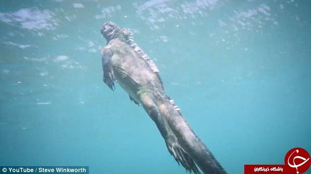 کشف گودزیلای انسان نما در اعماق اقیانوس+تصاویر