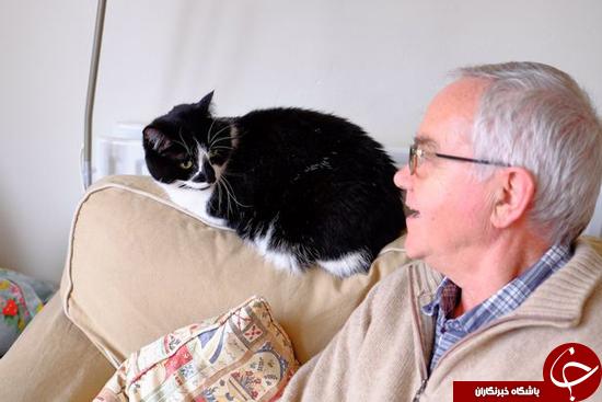 تام و جری واقعی را ببینید