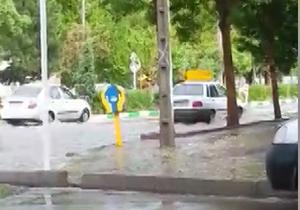 آبگرفتگی در خیابانهای مشهد + فیلم