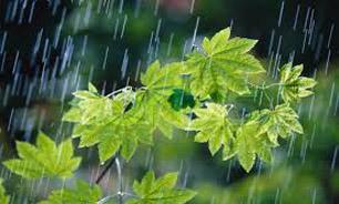 وضعیت آب و هوای استانهای کشور یکشنبه 9 فروردین 95+ جدول