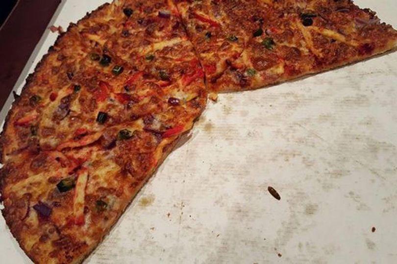 سوسکی که با پیتزا پخته شد + تصاویر