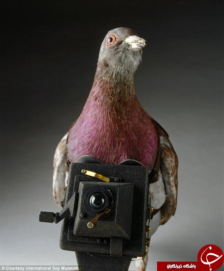وسایل جاسوسی خلاقانه +تصاویر