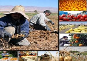 اجرای برجام چه تأثیری در بخش کشاورزی دارد؟