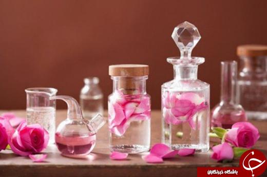 عطر گل محمدی در فضای علمی می پیچد/ از تولید معجون تا رایحه درمانی
