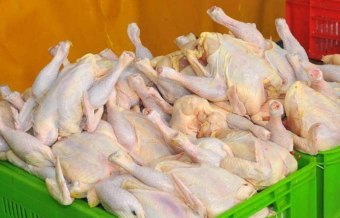 اقدامات وزارتبهداشت در مواجهه با آنفولانزای مرغی/ گرانی گوشت ربطی به شیوع آنفولانزا ندارد
