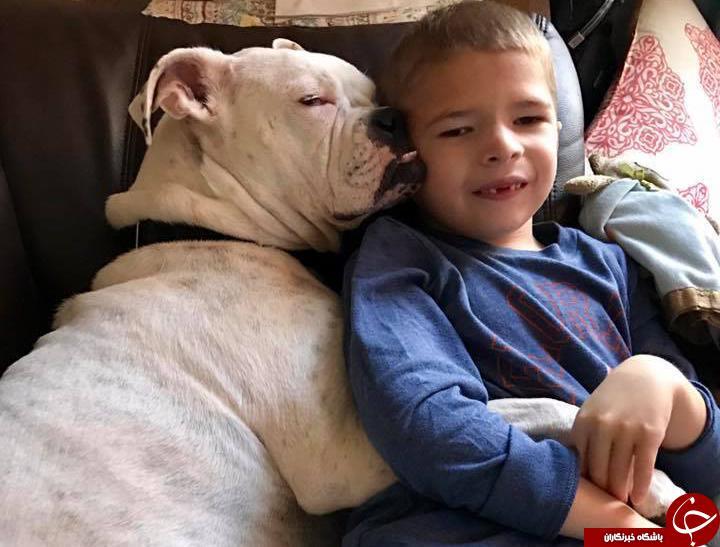 ارتباط شگفت انگیز سگ ناشنوا و پسربچه لال!+ عکس