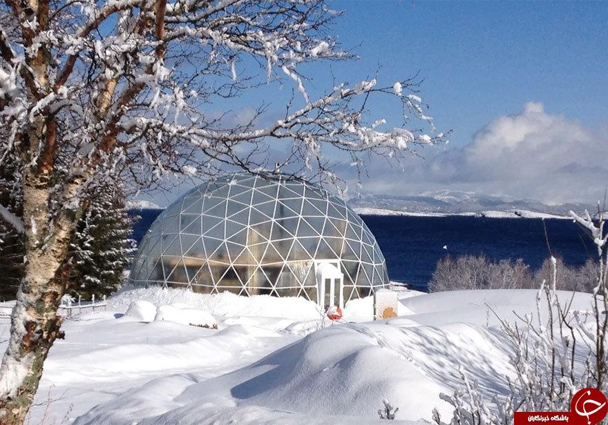 خانه ای که بهار را وسط زمستان تجربه می کند