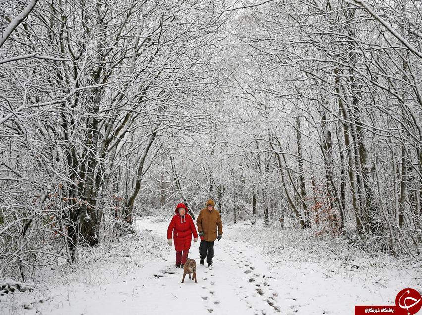 برف و سرمای مرگبار، اروپا را فراگرفت+ تصاویر