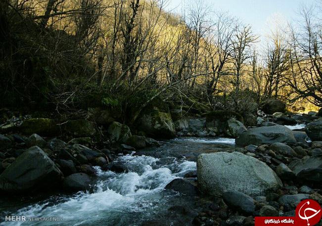 عکس/ آبشار مسکین آستارا