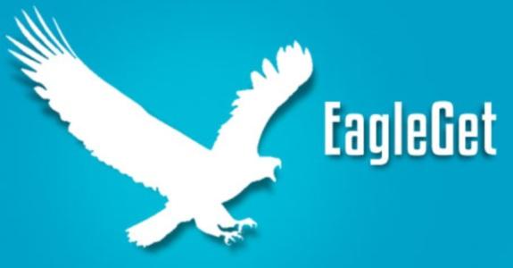 EagleGet 2.0.4.19 + Portable مدیریت دانلود