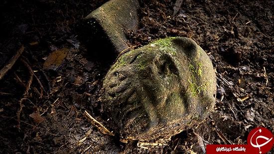 شهر گمشدهای که در جنگل پیدا شد +تصاویر