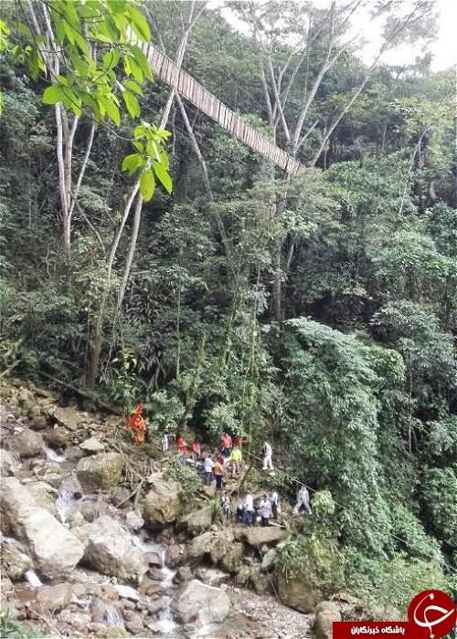 11 کشته در پی سقوط یک پل معلق در کلمبیا + تصاویر