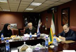 توسعه چوگان، توسعه فرهنگ ایرانی را در پی دارد