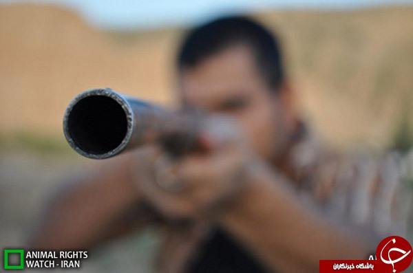 تیراندازی در یکی از روستاهای استان 6 مجروح بر جای گذاشت