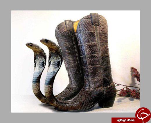 کفشهایی که از دیدن آنها وحشت خواهید کرد!
