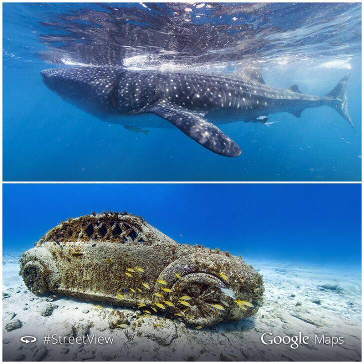 سفر به اعماق اقیانوس ها با گوگل مپ +عکس