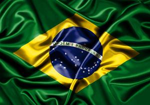 بر اثر سقوط یک هواپیمای کوچک در برزیل، ۳ نفر جان خود را از دست دادند